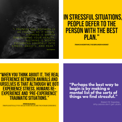 the featured image of stress quotes article